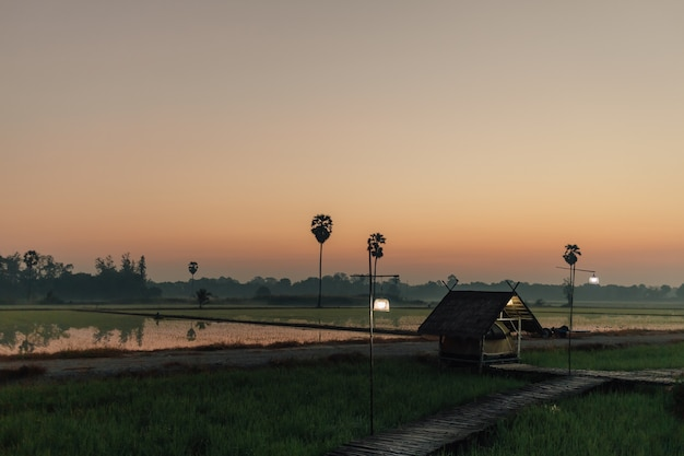 Cabana pequena no campo de arroz com o nascer do sol no conceito de paz.