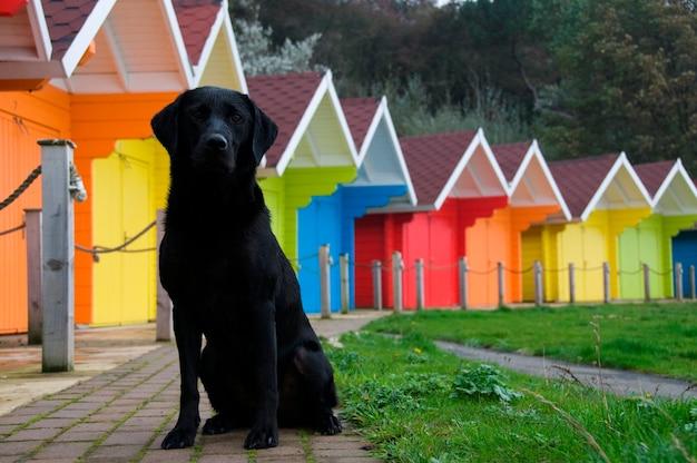 Cabanas de praia coloridas.
