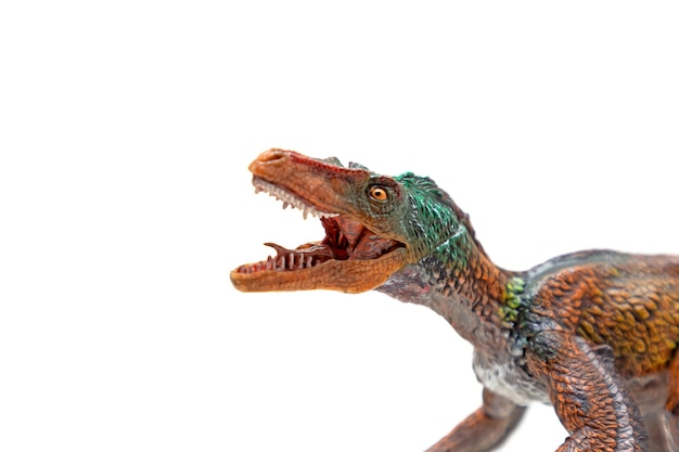 Cabeça de velociraptor com boca aberta