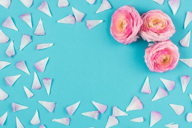 Cabeças de flor na esquina com pétalas no fundo brilhante