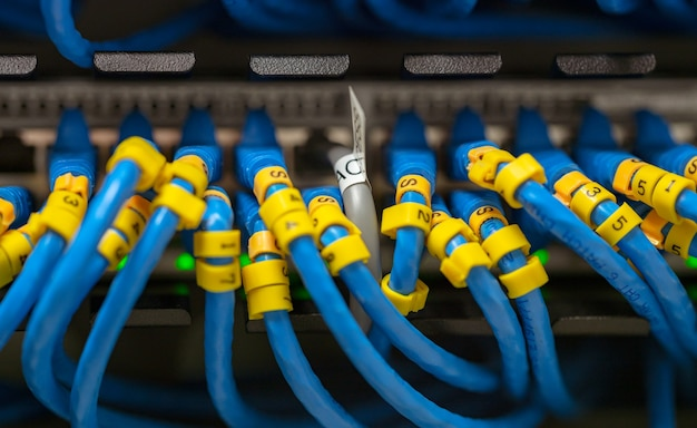 Cabo lan azul em switches de rede