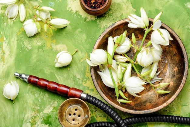 Cachimbo e tabaco floral