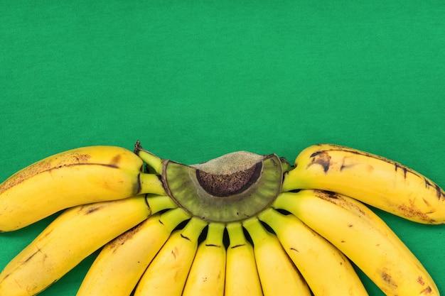 Cacho de bananas na filial sobre fundo verde.