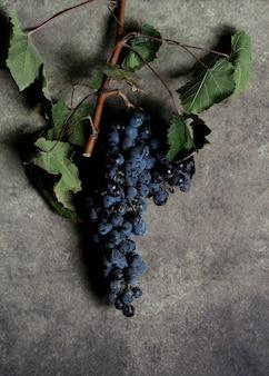 Cacho de uvas com folhas sobre cinza
