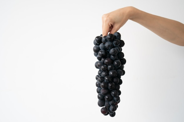 Cacho fresco de uvas pretas roxas disponível sobre fundo branco. uva kyoho.