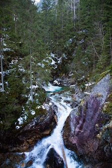 Cachoeira bonita wodogrzmoty mickiewicza em montanhas polonesas de tatra perto de zakopane im poland.
