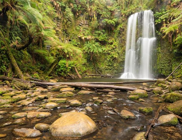 Cachoeira cercada por vegetação e pedras sob o sol em uma floresta