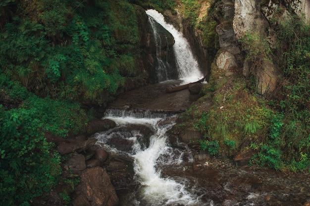 Cachoeira choodor no lago teletskoye