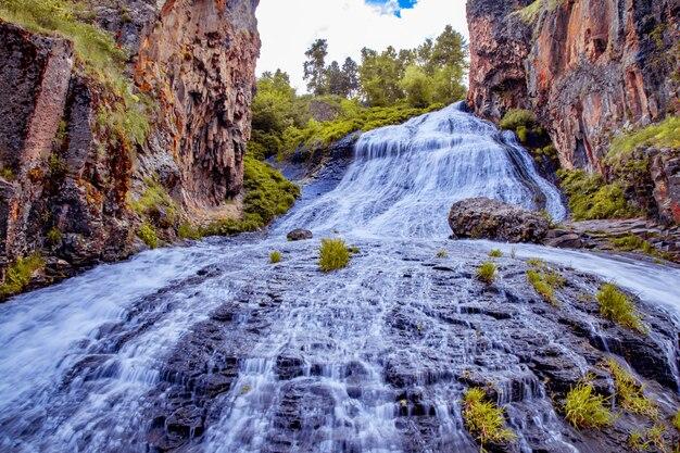 Cachoeira colorida em floresta de verão