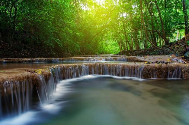 Cachoeira com árvore na floresta profunda, kanchanaburi, tailândia