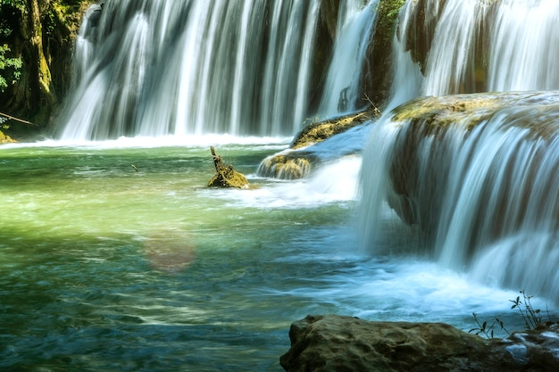 Cachoeira com pura limpeza na floresta tropical.