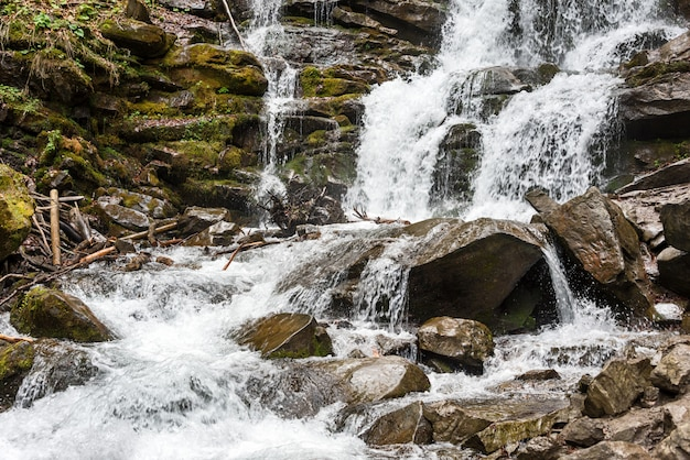 Cachoeira da floresta e rochas cobertas de musgo. cárpatos, shypit, ucrânia, europa.