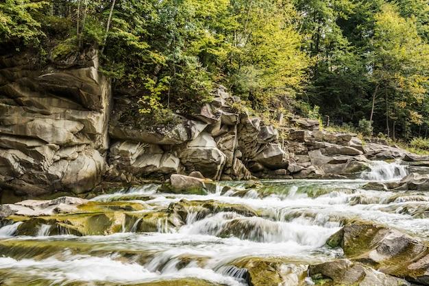 Cachoeira da montanha dos cárpatos