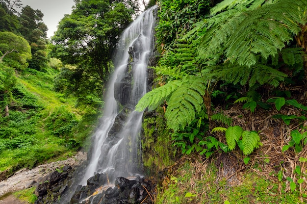 Cachoeira de água no meio da natureza. são miguel. açores