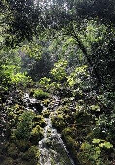 Cachoeira de colorfull em uma caverna cascate del varone em riva del garda