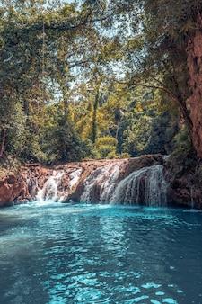 Cachoeira de forrest