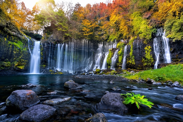 Cachoeira de shiraito no outono, japão.