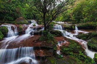 Cachoeira de Tad-Wiman-Thip, cachoeira bonita em ThaiLand.