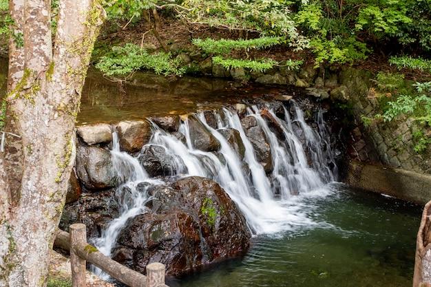 Cachoeira do parque minoh. osaka, japão