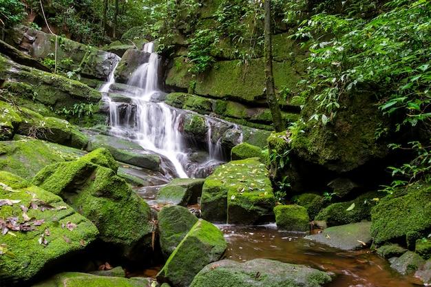 Cachoeira entre natureza verde musgo e rock