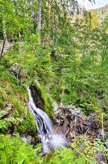 Cachoeira fahler nas montanhas da floresta negra. baden-wurttemberg, alemanha