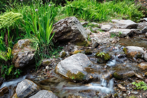 Cachoeira jibi himachal pradesh
