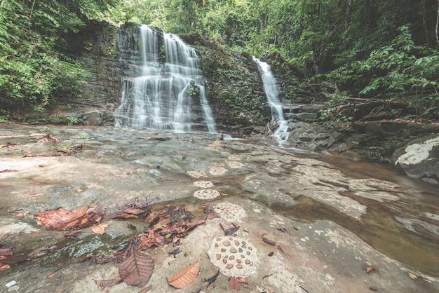 Cachoeira na floresta tropical do parque nacional kubah, west sarawak, bornéu, malásia