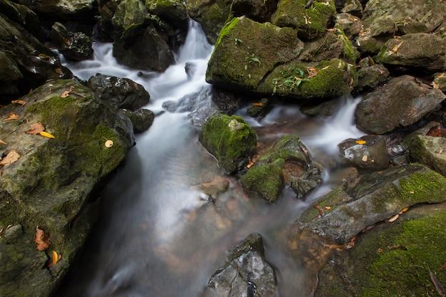 Cachoeira na natureza na estação das chuvas nos trópicos.