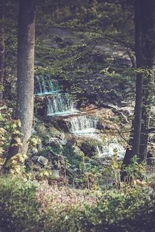 Cachoeira nas rochas em torno da qual crescem árvores com folhas verdes e grama, filtro vintage escuro