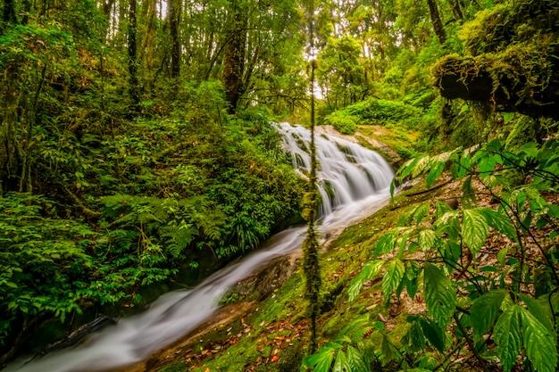 Cachoeira no parque nacional de doi inthanon, tailândia