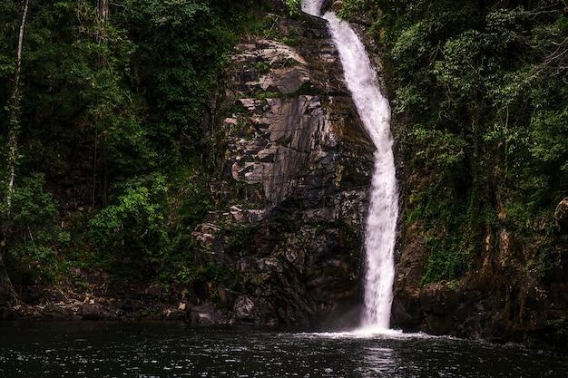 Cachoeira pequena em floresta tropical