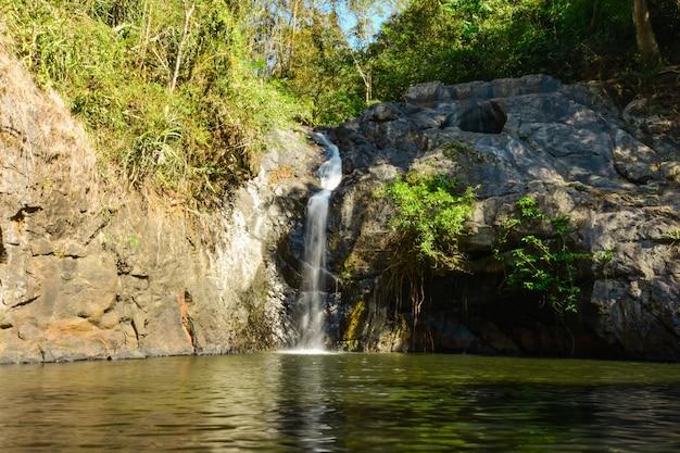 Cachoeira pequena na floresta profunda.