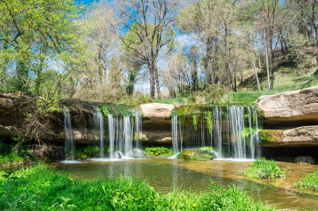 Cachoeira pequena no campo