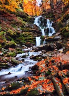 Cachoeira pitoresca na floresta de outono