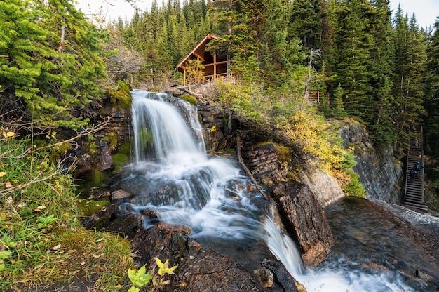 Cachoeira que flui na floresta com casa de chá no lago agnes no parque nacional de banff