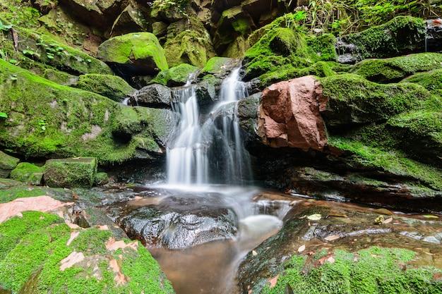 Cachoeira sai tip