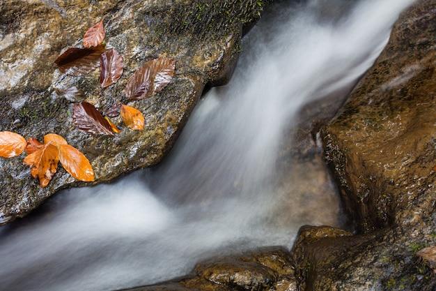 Cachoeira skakalo nas montanhas dos cárpatos, transcarpathia, ucrânia