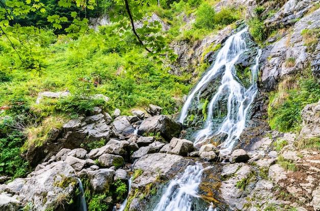 Cachoeira todtnau nas montanhas da floresta negra, uma das cachoeiras mais altas da alemanha