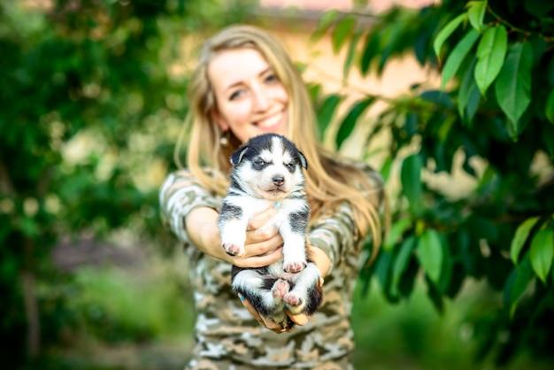 Cachorrinho ronco muito pequeno ao ar livre nas mãos da mulher