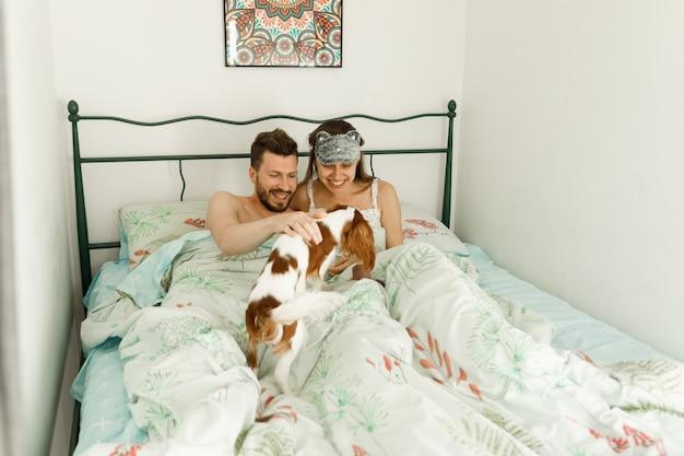 Cachorro acorda os donos de manhã.