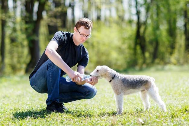 Cachorro bebendo água das mãos de homens durante o calor do verão