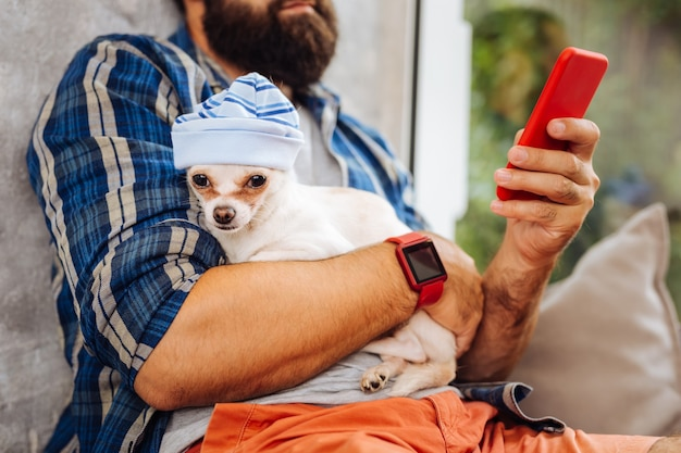 Cachorro com chapéu. cachorrinho branco fofo com chapéu azul sentado sobre o dono e passando um tempo na sala de café