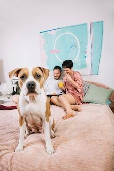Cachorro com donos durante a manhã