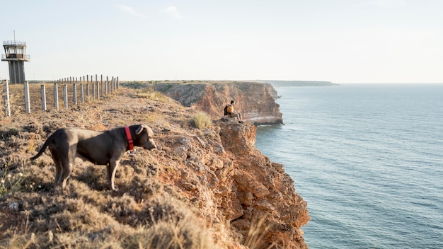 Cachorro com vista lateral passeando ao lado do dono em uma costa com espaço de cópia
