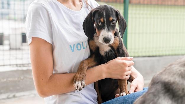 Cachorro de resgate fofo, mas triste esperando para ser adotado por alguém