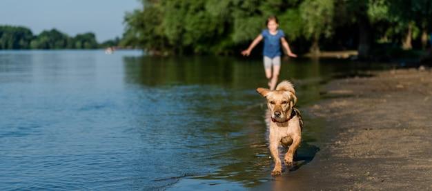 Cachorro e garota correndo ao longo da praia