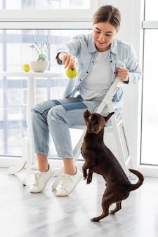 Cachorro em plena cena olhando para uma maçã