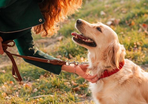 Cachorro feliz e seu dono no parque em um dia ensolarado