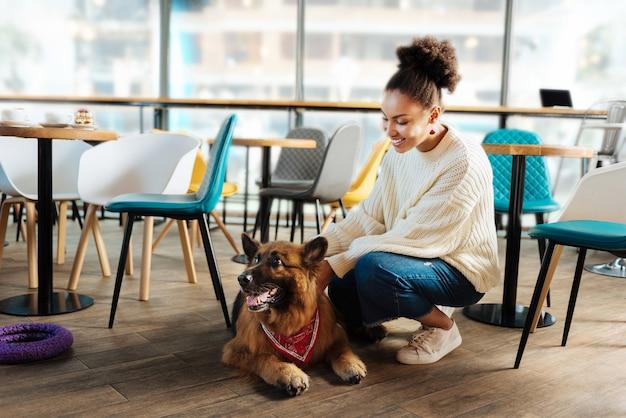 Cachorro fofinho. linda mulher de cabelos escuros olhando para seu lindo cachorro enquanto vai à padaria no fim de semana