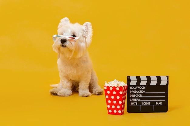 Cachorro fofo com elementos de filme
